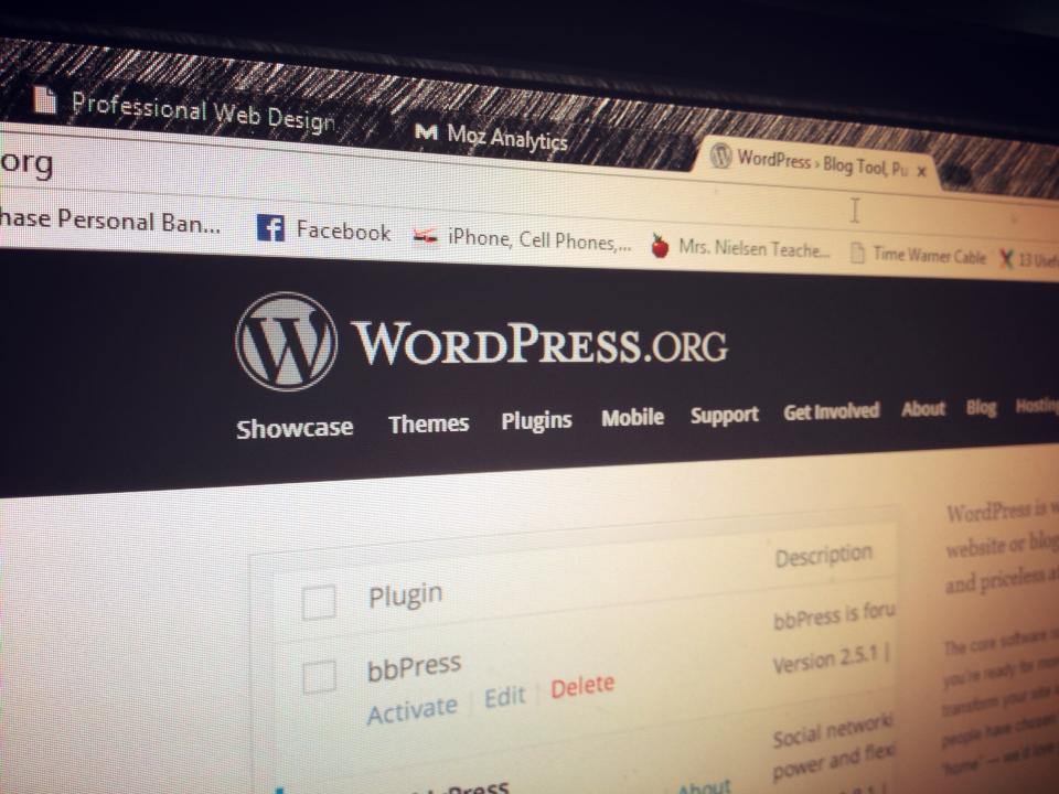 web-consulting-wordpress